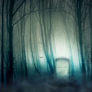 porta nel bosco